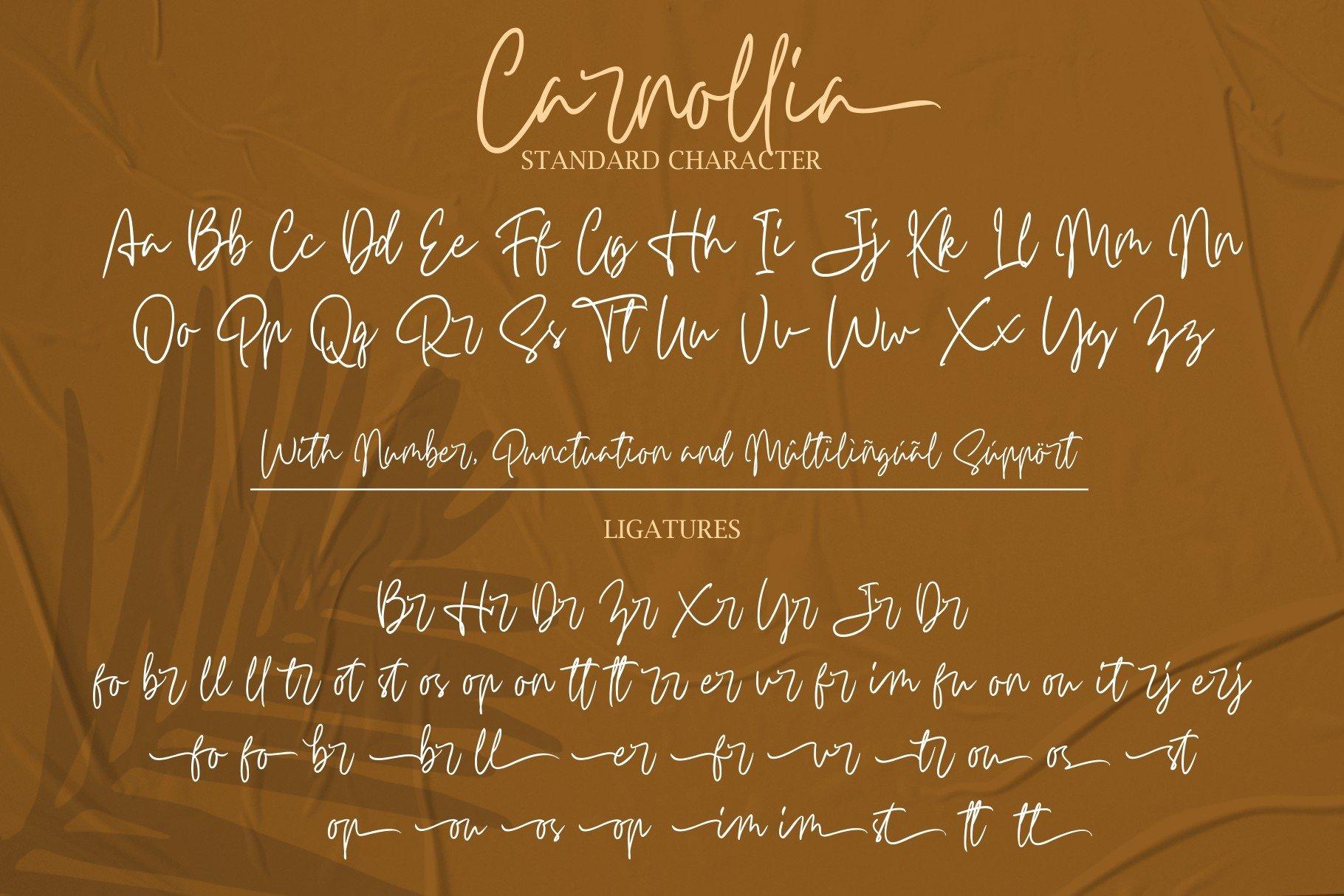 Carnollia Signature example image 16