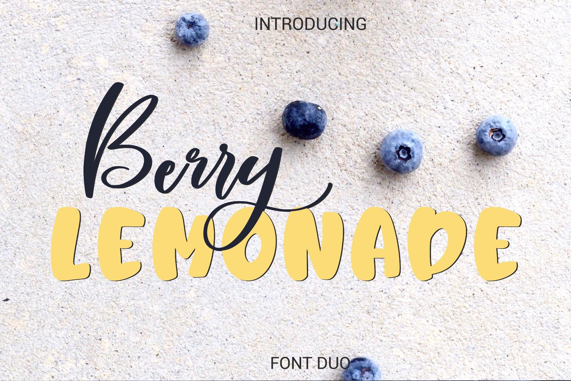 Berry Lemonade Font Duo example image 1