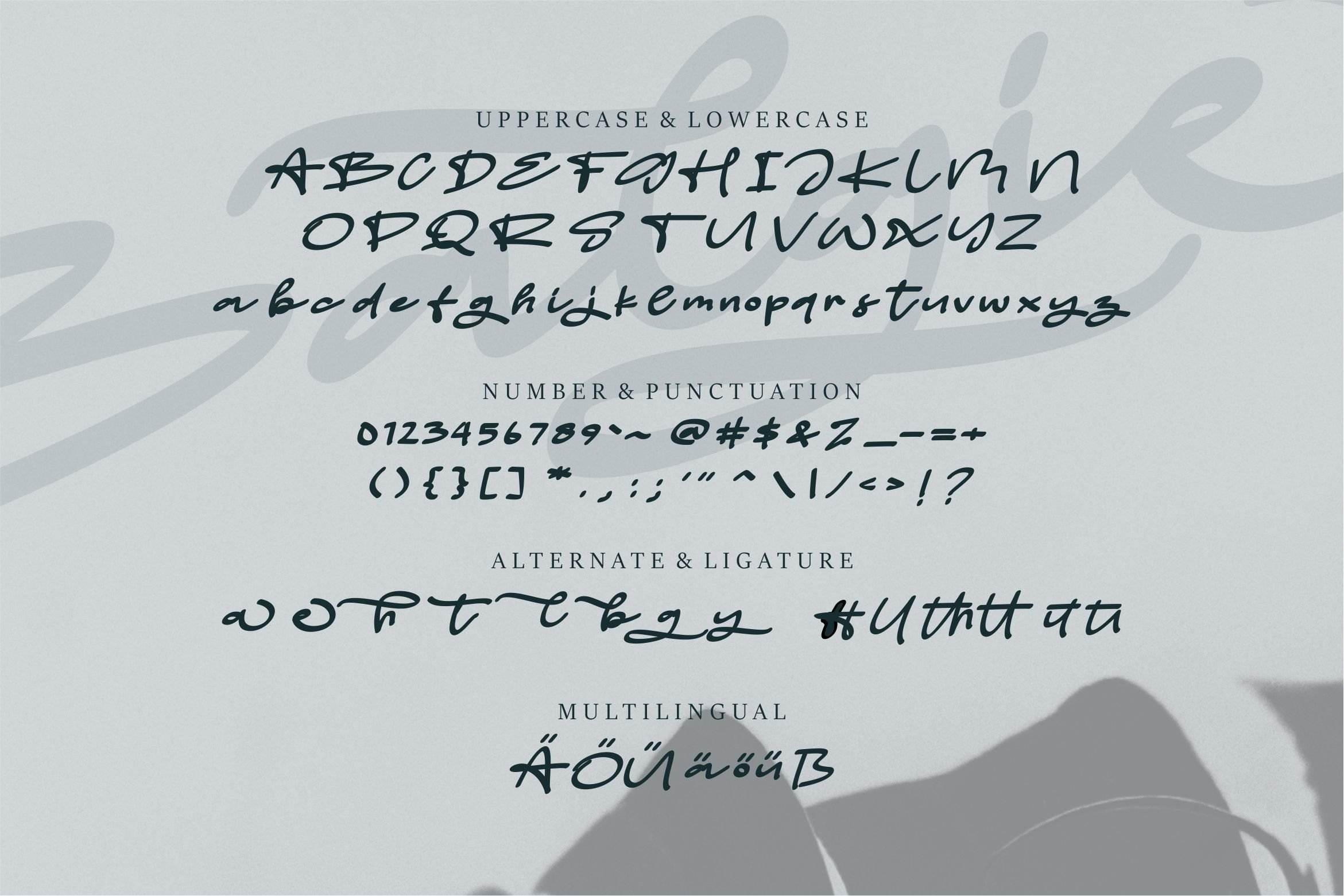 Balgie - A Stylish Script Font example image 6