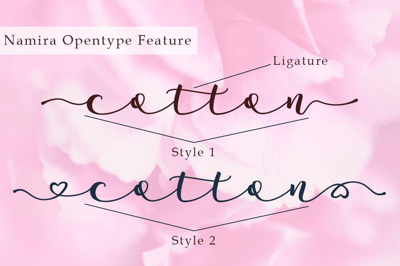 Namira | Modern Calligraphy Script Font example image 7