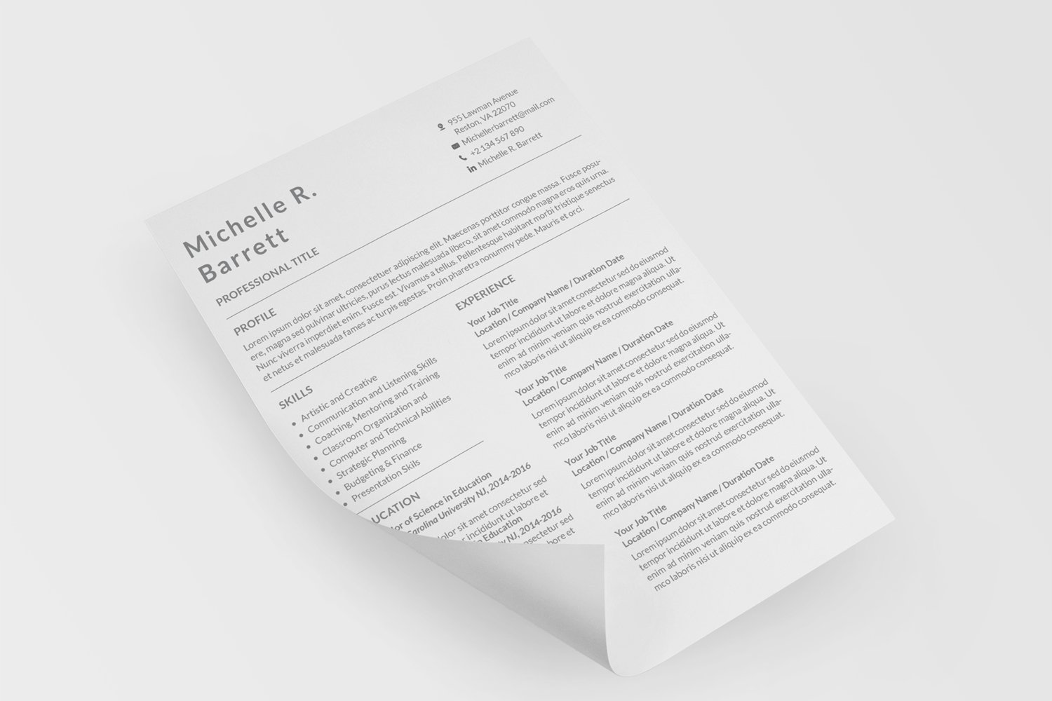 Professional Resume Templates example image 3