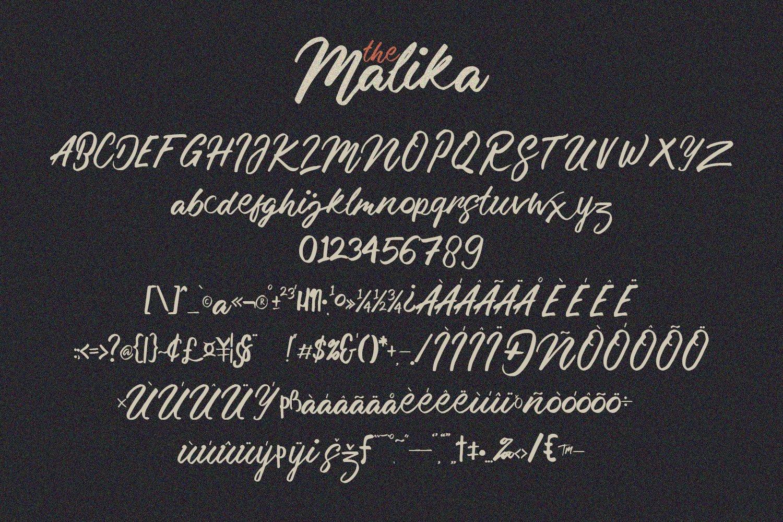 Malika Brush Script Typeface example image 11