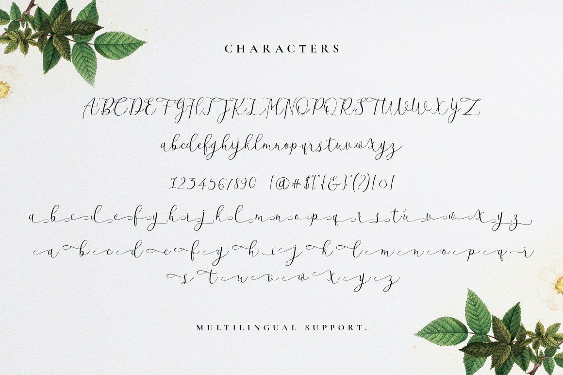 Beatisia Script example image 6