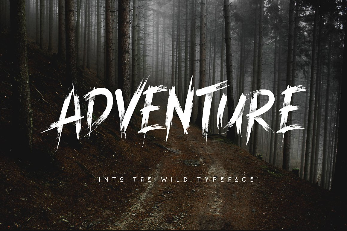 Into The Wild Brush Typeface example image 3