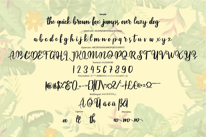 Aiseya - Modern Script Style Font example image 6