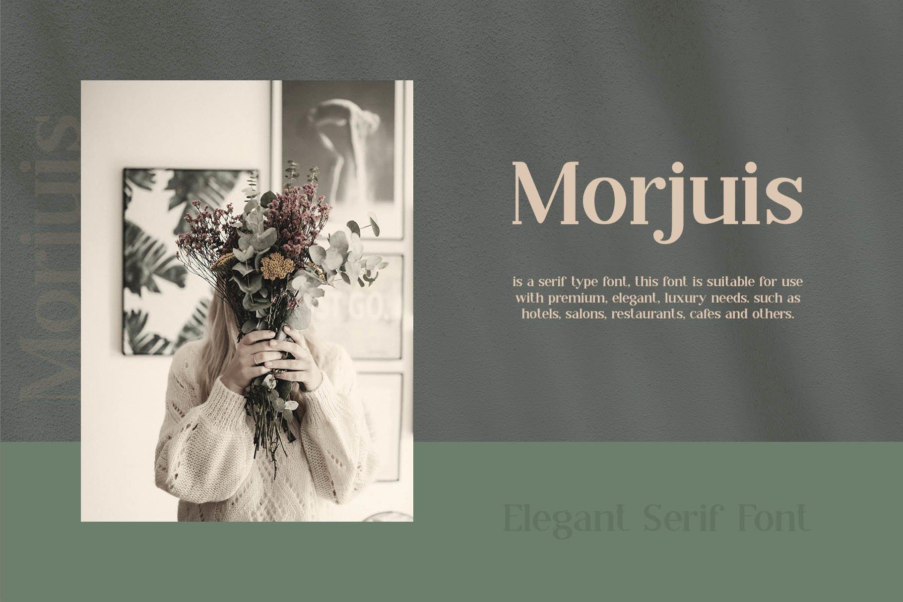 MORJUIS - Serif Font Typeface example image 6