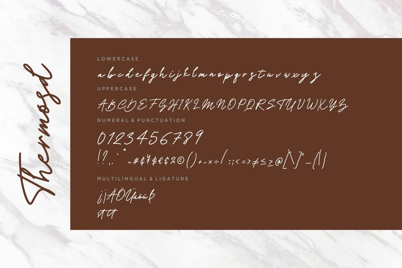 Thermosd Handwritten Signature example image 4