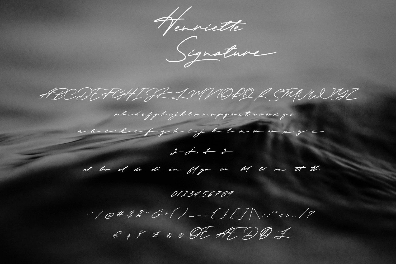 Henriette Signature Script Font example image 8