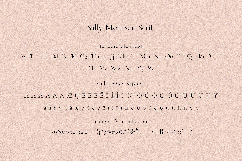 Sally Morrison Script & Serif example image 22