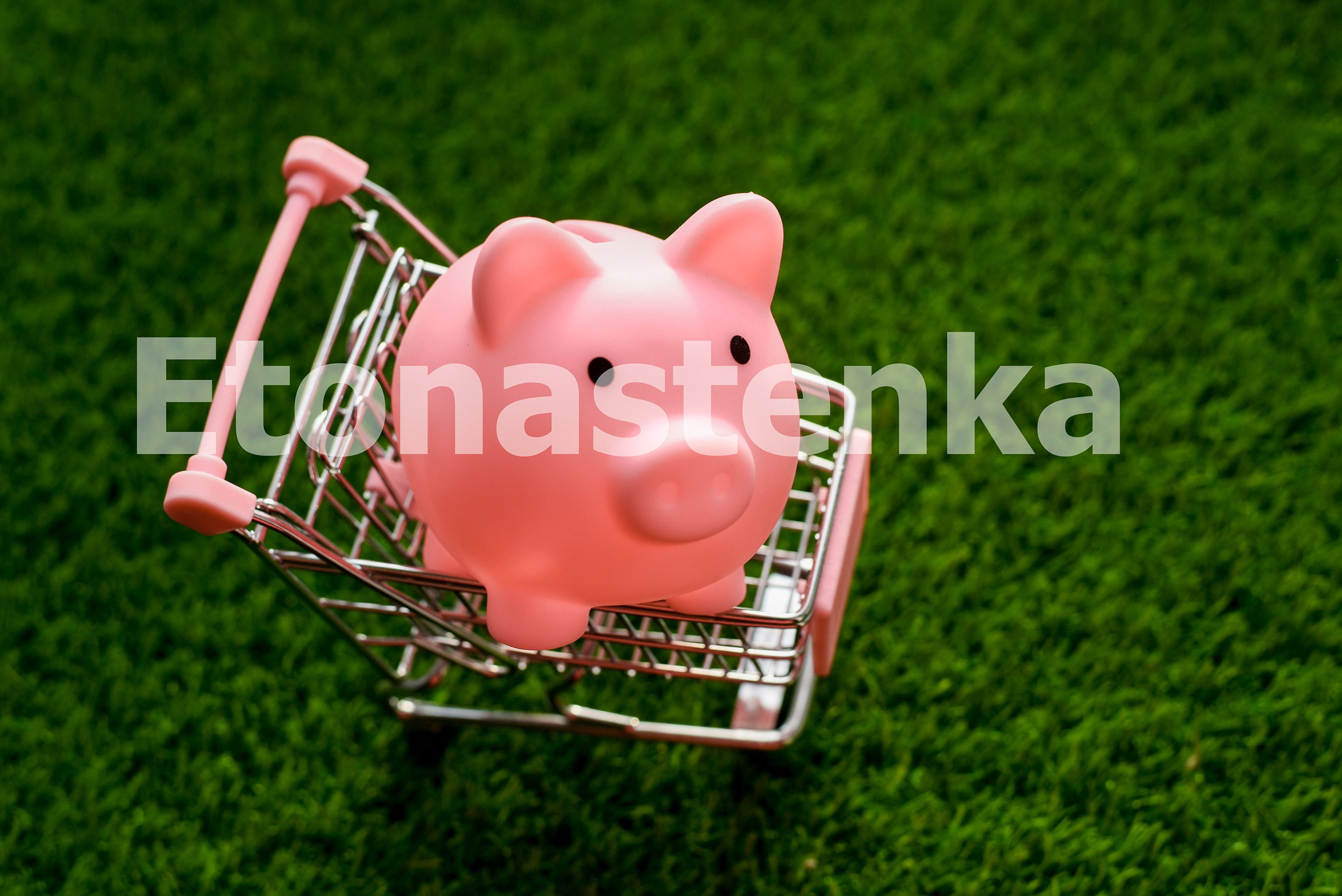 Trolley with piggy bank piggy on a background of green grass example image 1