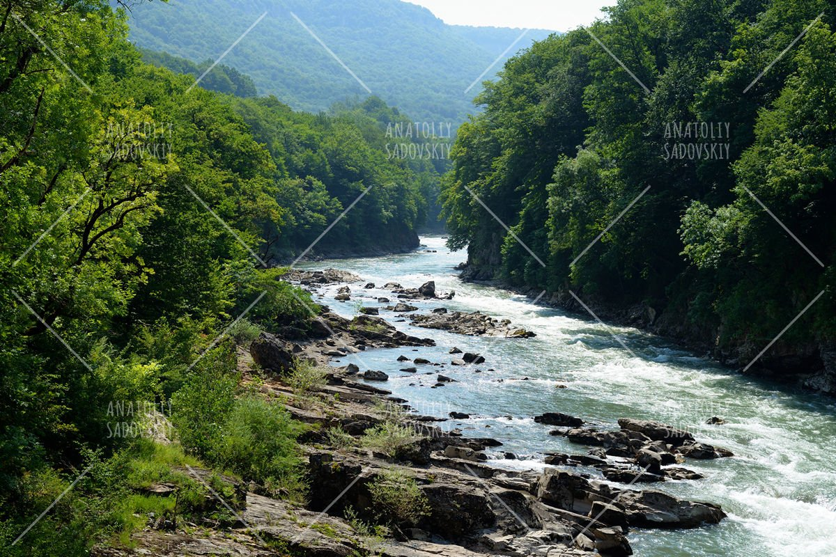 Summer landscape with mountain river example image 1