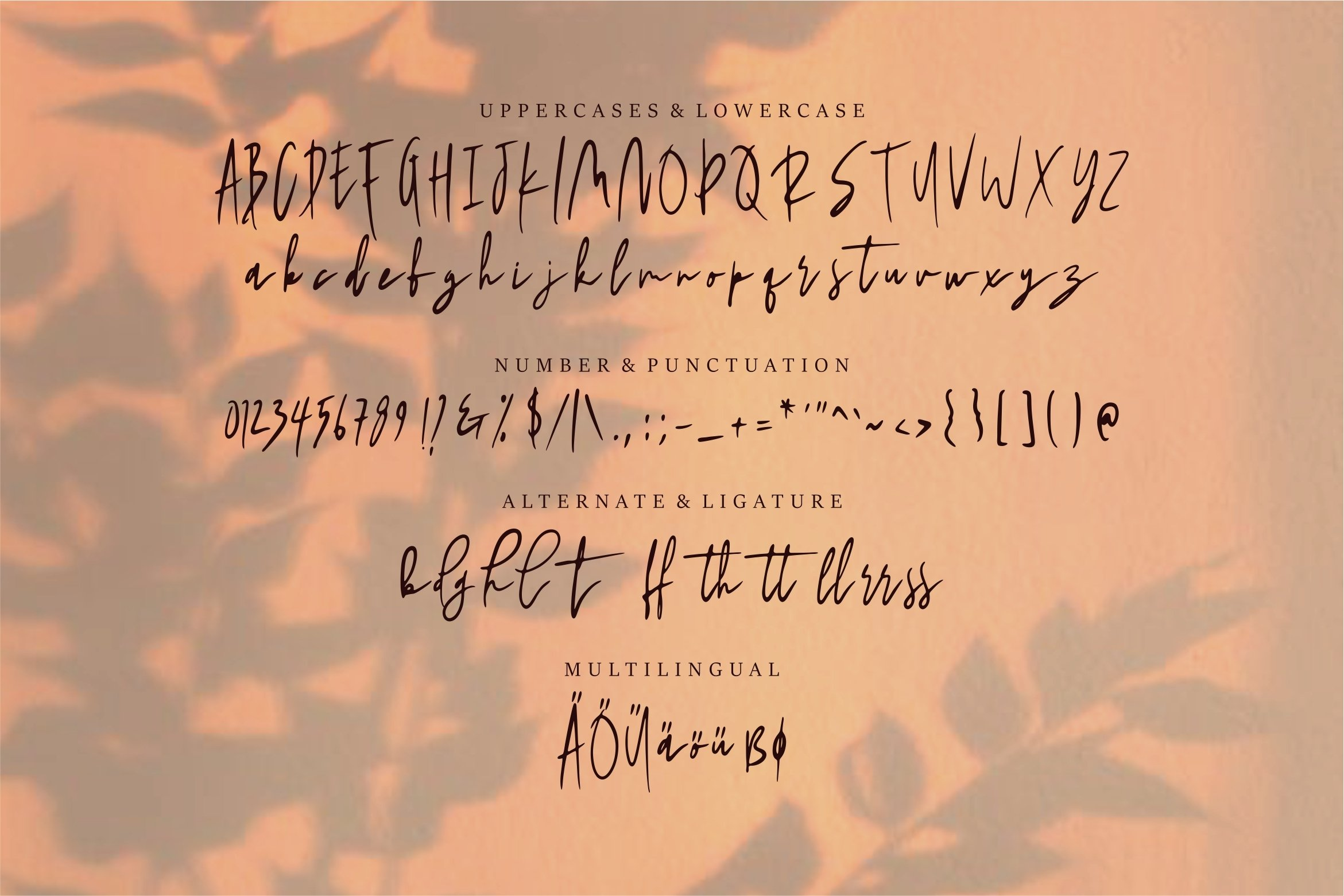 Shadira - A Beauty Handwritten Font example image 2