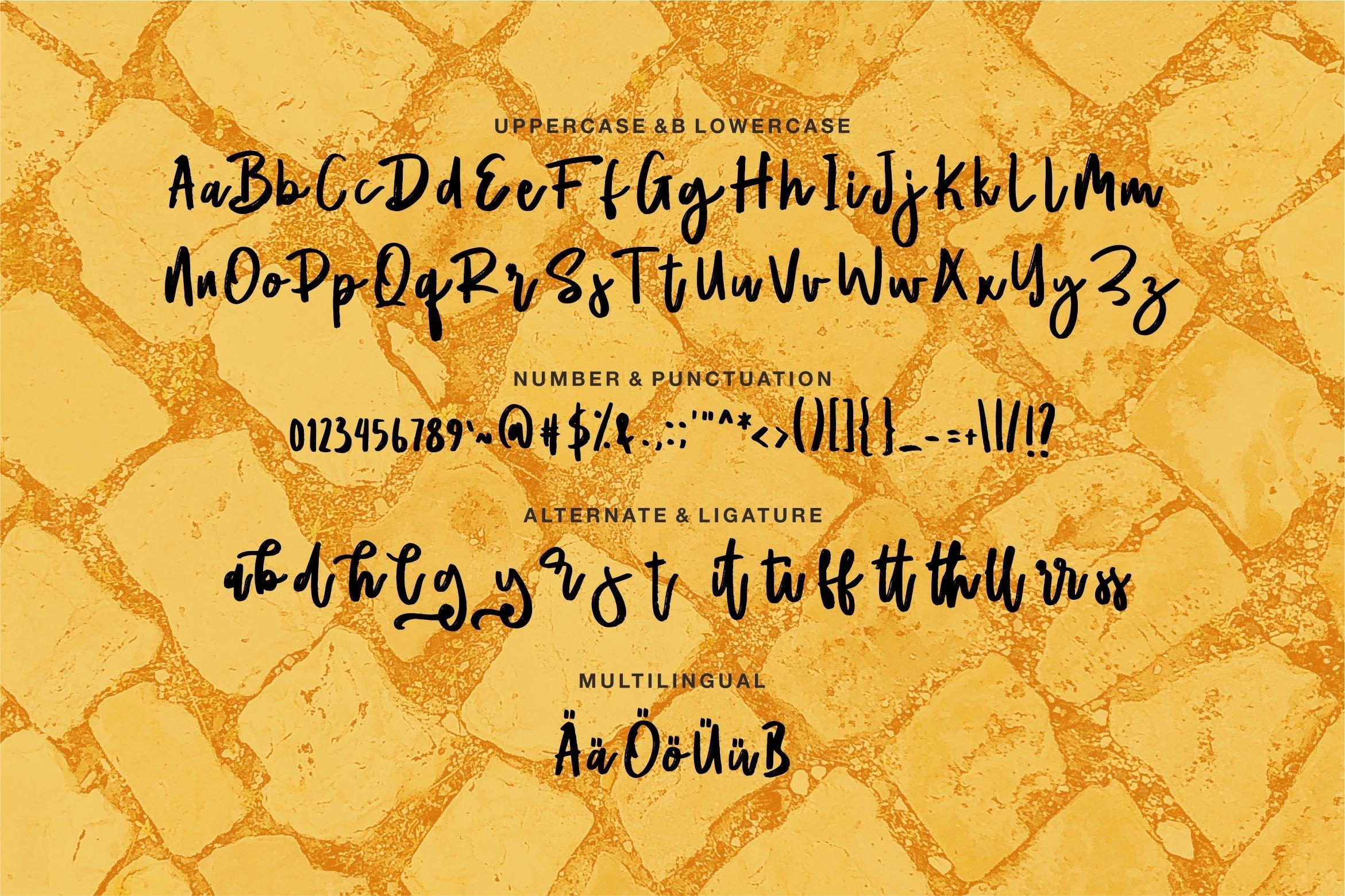 Matlod - A Stylish Script Brush Font example image 6