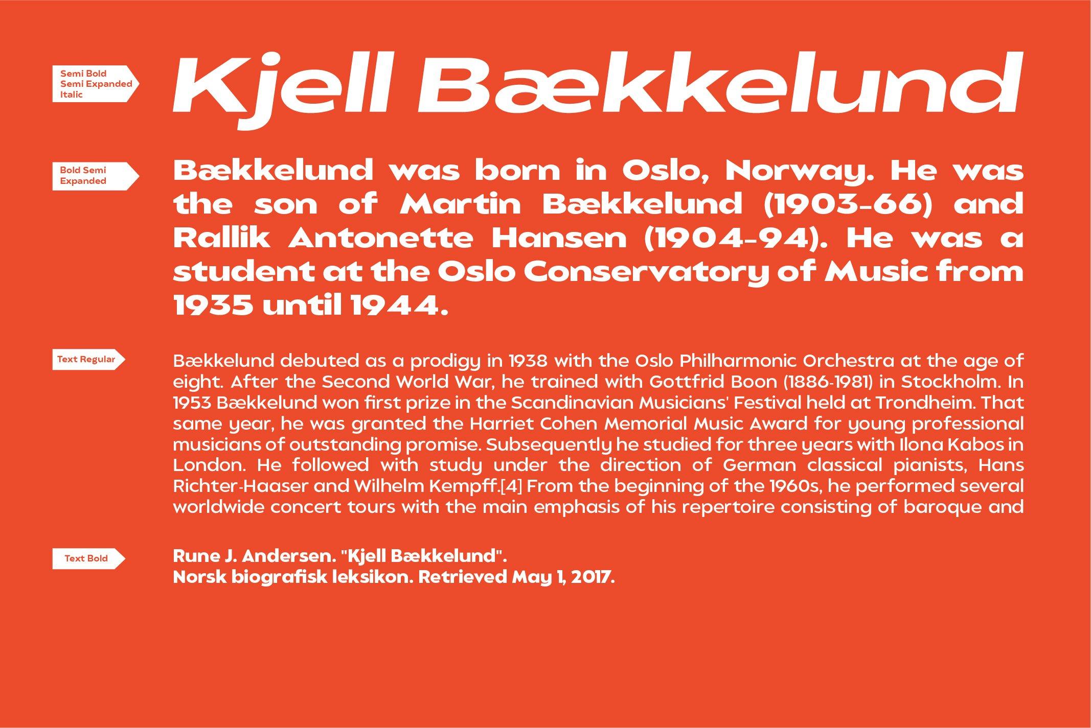 Balgin Font Family example image 15
