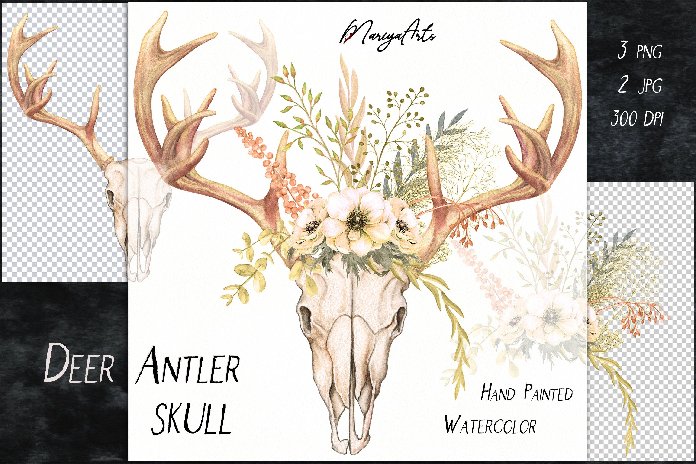 Deer Antlers and Skull, Field Flowers, Watercolor Clipart example image 2