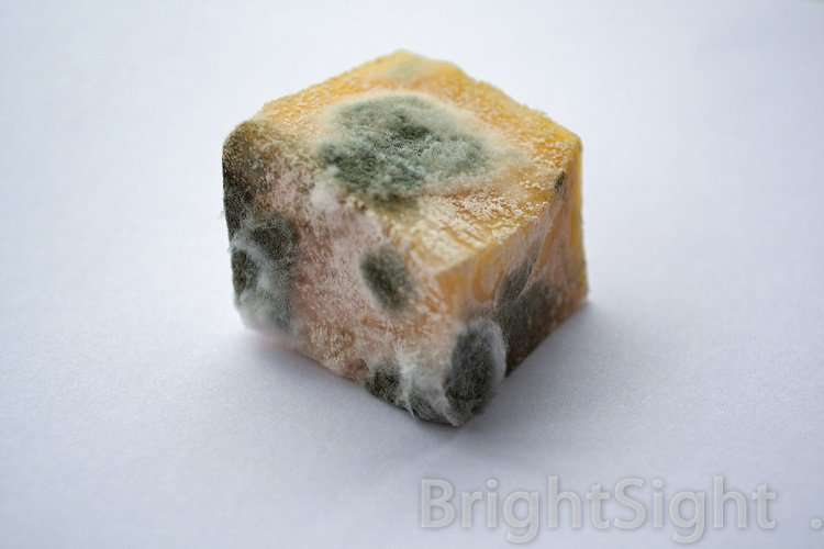 Spoiled cheese with mold example image 1