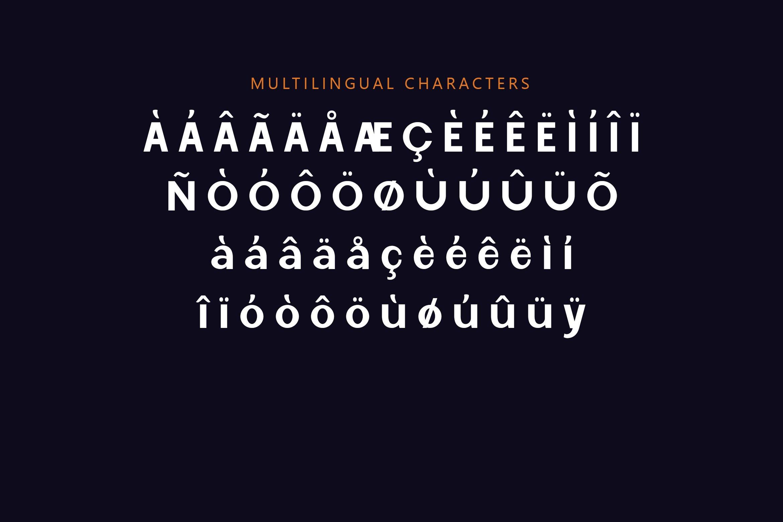 Lynsic Cisnyl - Sans Serif Font example image 7