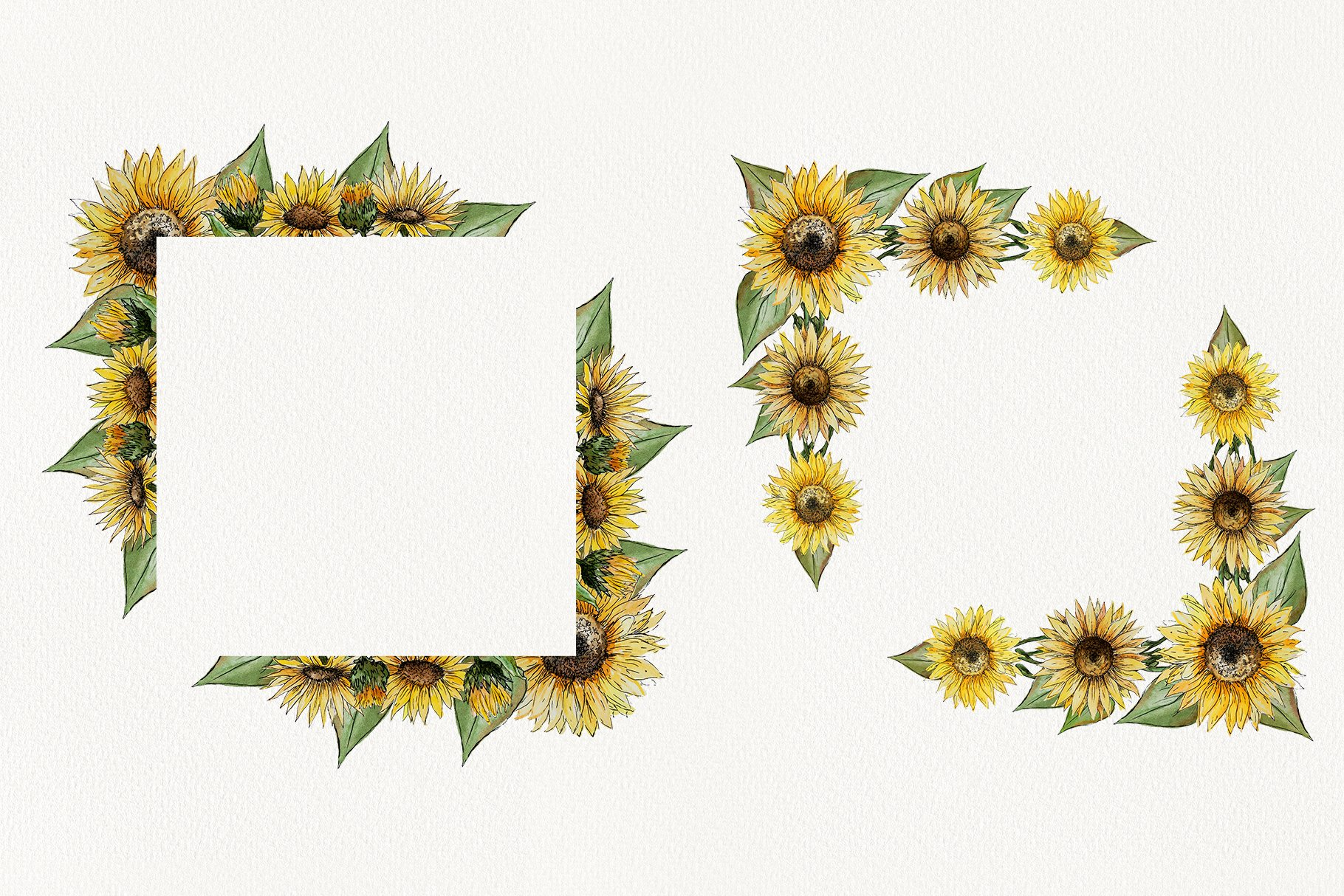 Watercolor Sunflower Clipart Collection example image 4