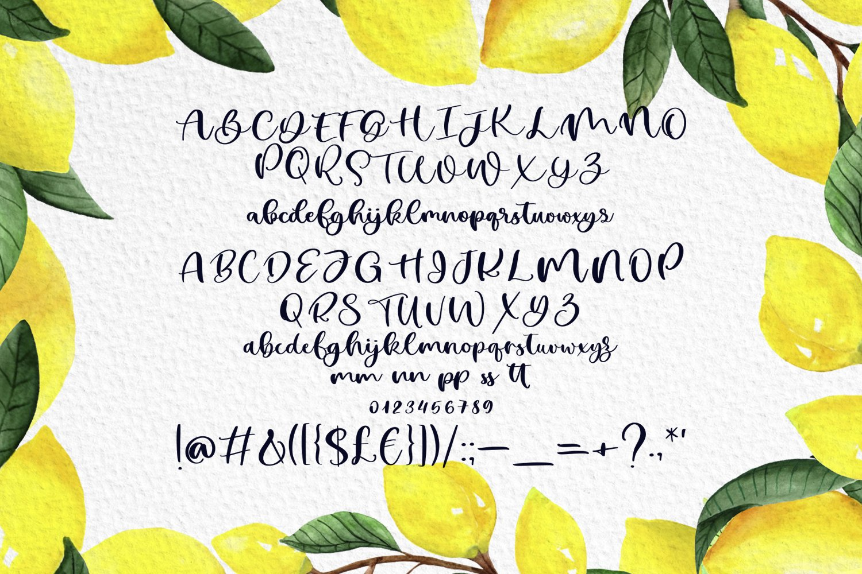 Lemon Summer Font Duo example image 5