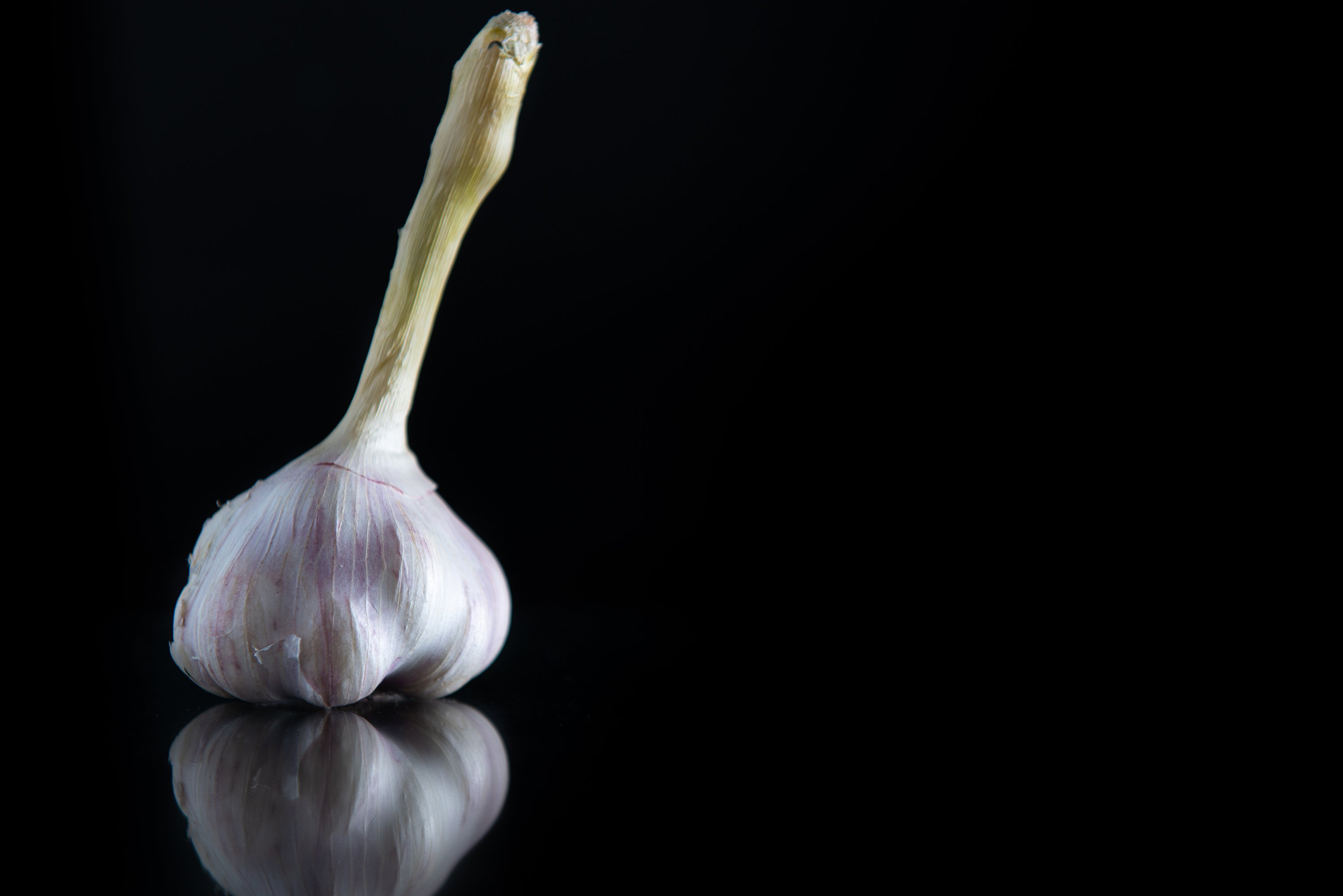 garlic with a stem on a black isolated background example image 1