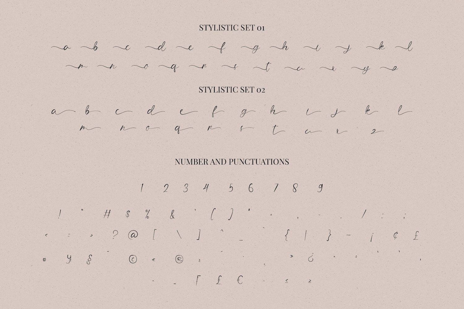 The Angellica - Modern Calligraphy Font example image 13