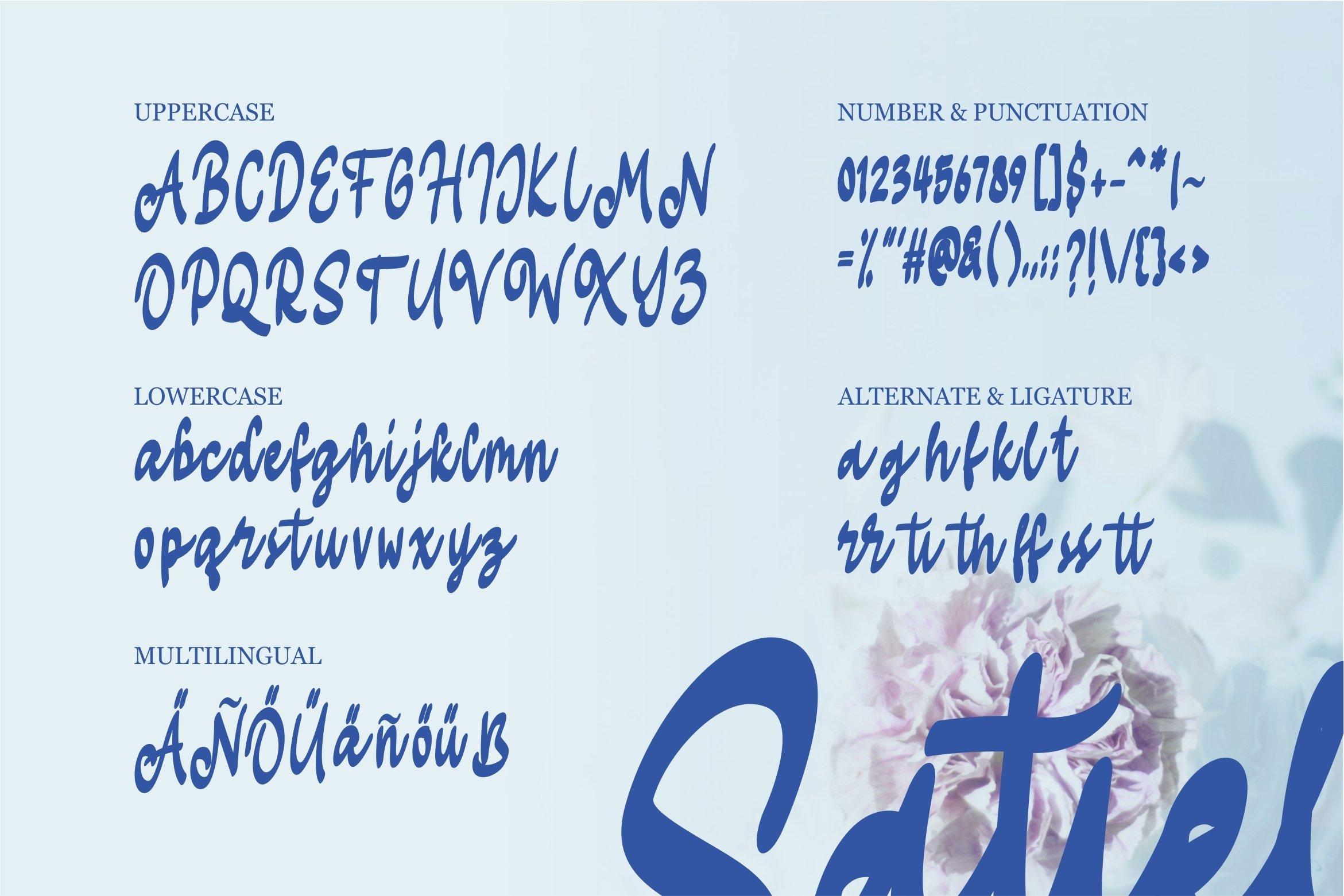 Satiel - Script Font example image 5