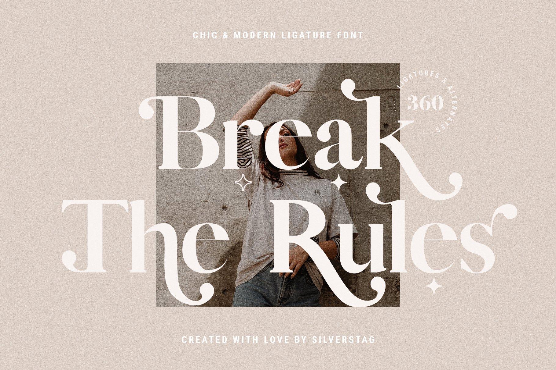 Vicky Christina - Chic & Stylish Ligature Serif Font example image 18