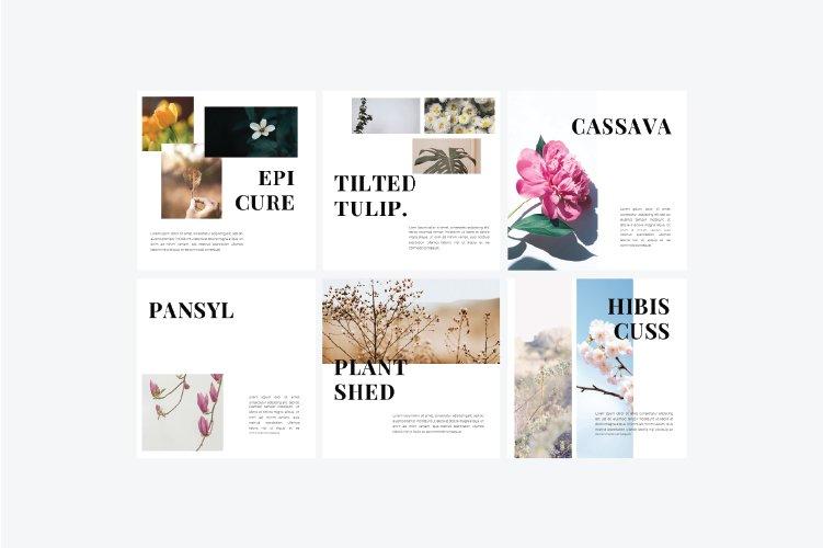 Flowers Instagram Template & Instagram Stories example image 4