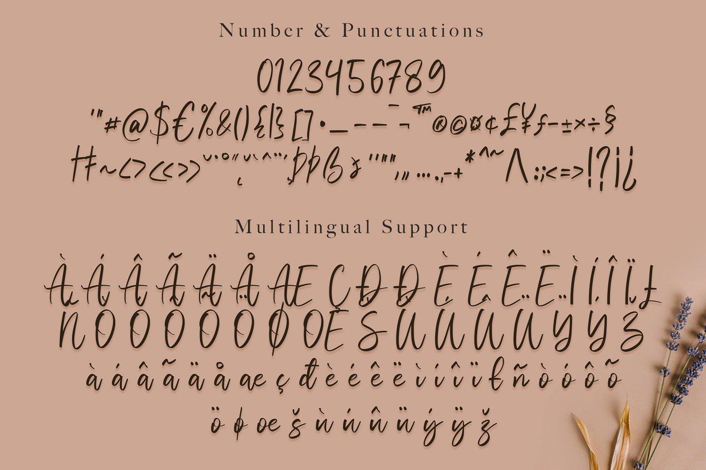 Vivy Aquilla - Handwritten Font example image 13