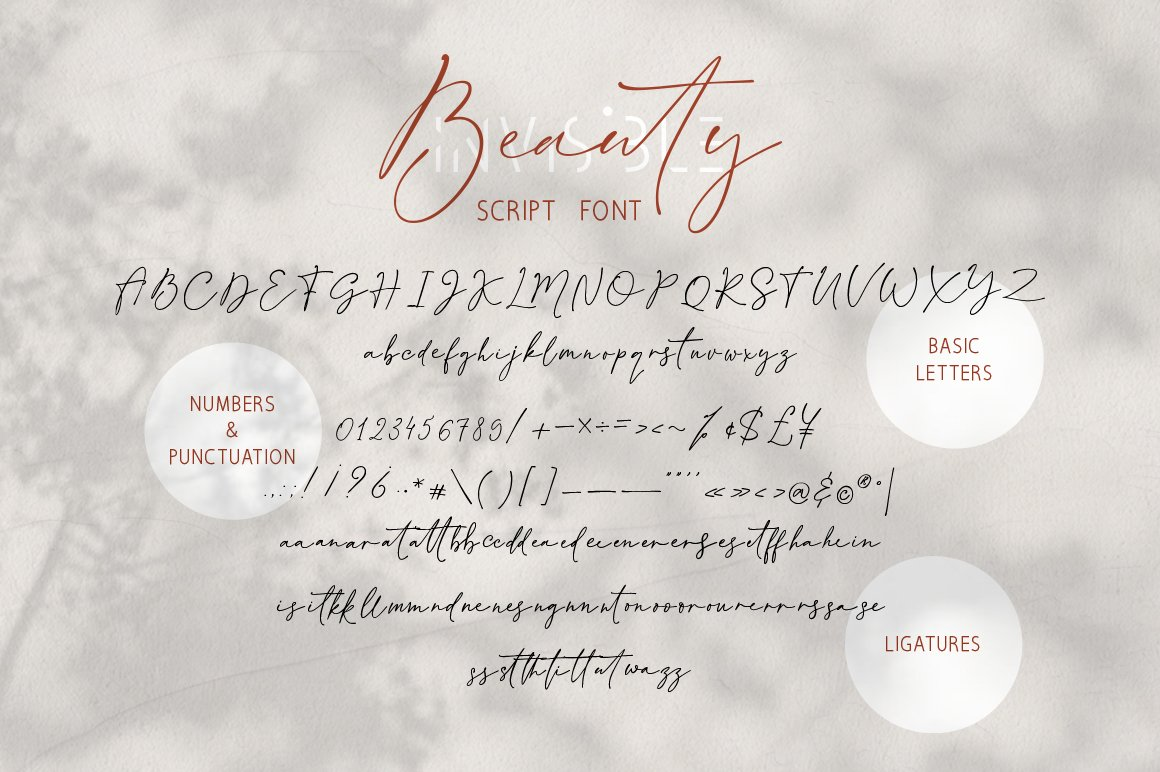 Invisible Beauty. Chic Duo Font. example image 9