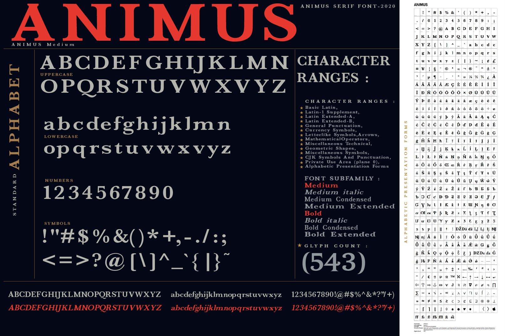 ANIMUS - Serif font family example image 10
