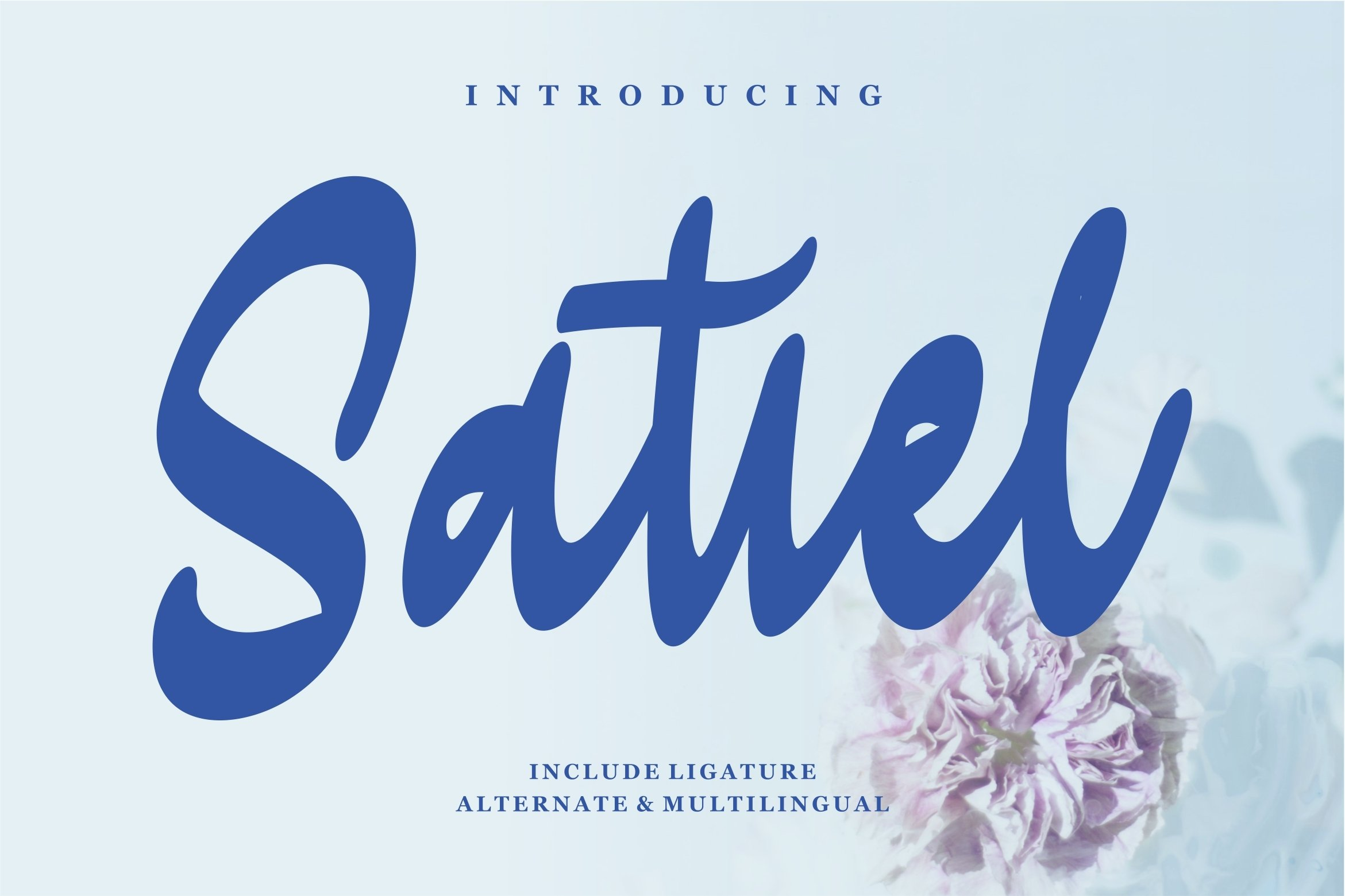 Satiel - Script Font example image 1