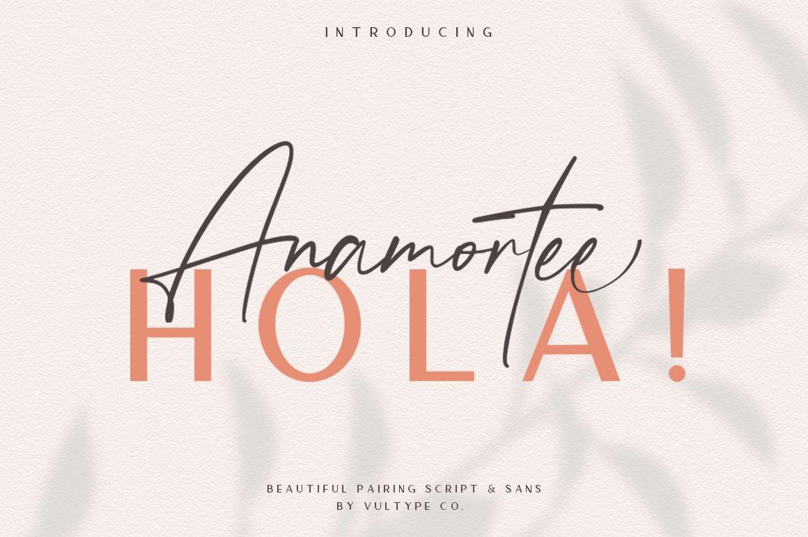 Anamortee // Modern Calligraphy Font example image 1