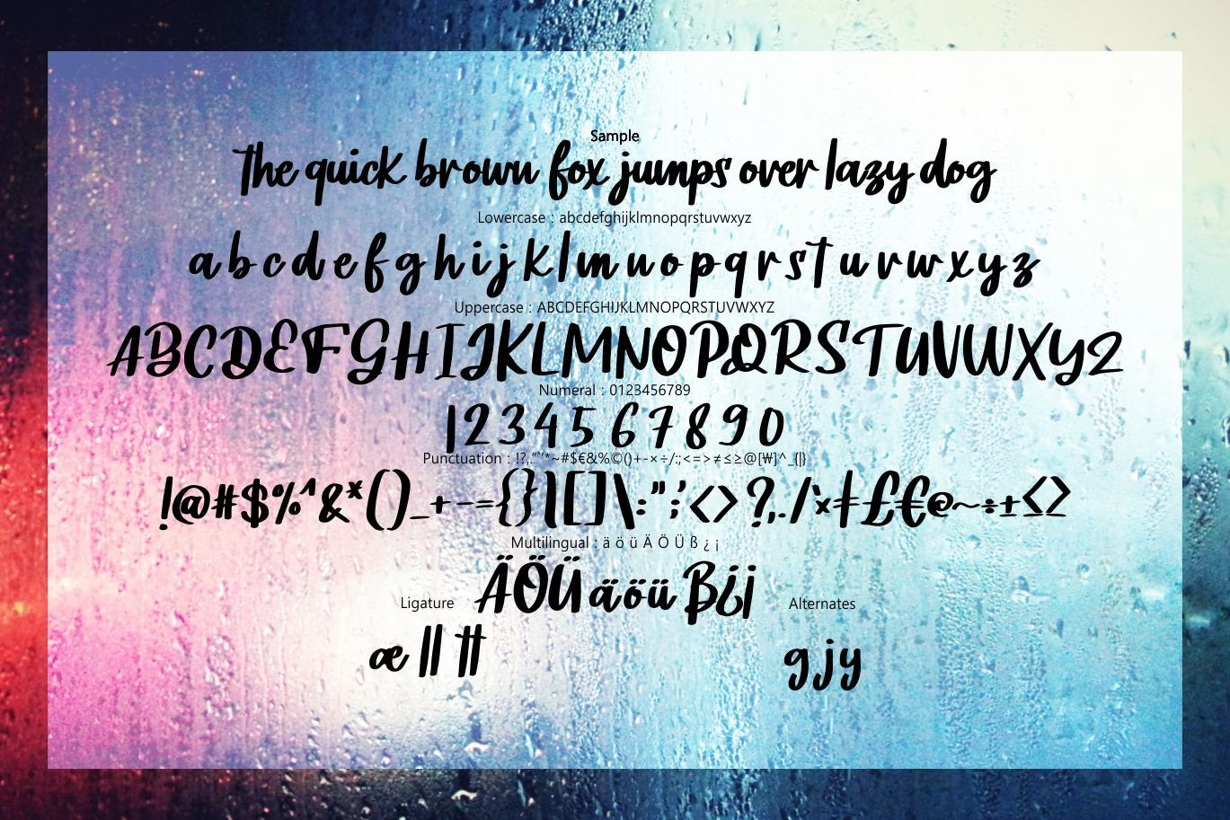 Noifale   Modern Script Font example image 6