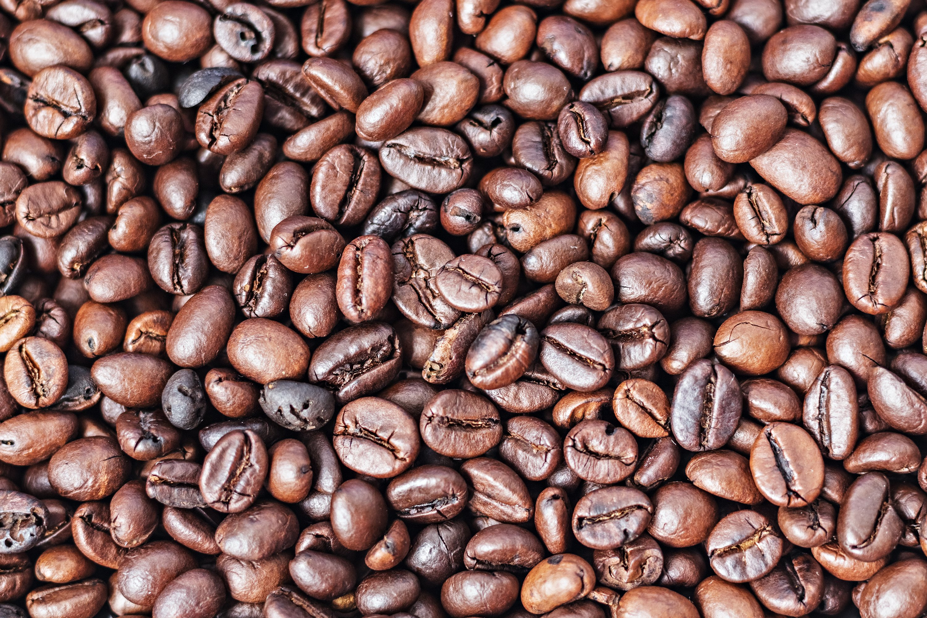 Background from roasted coffee beans. Elite coffee. example image 1