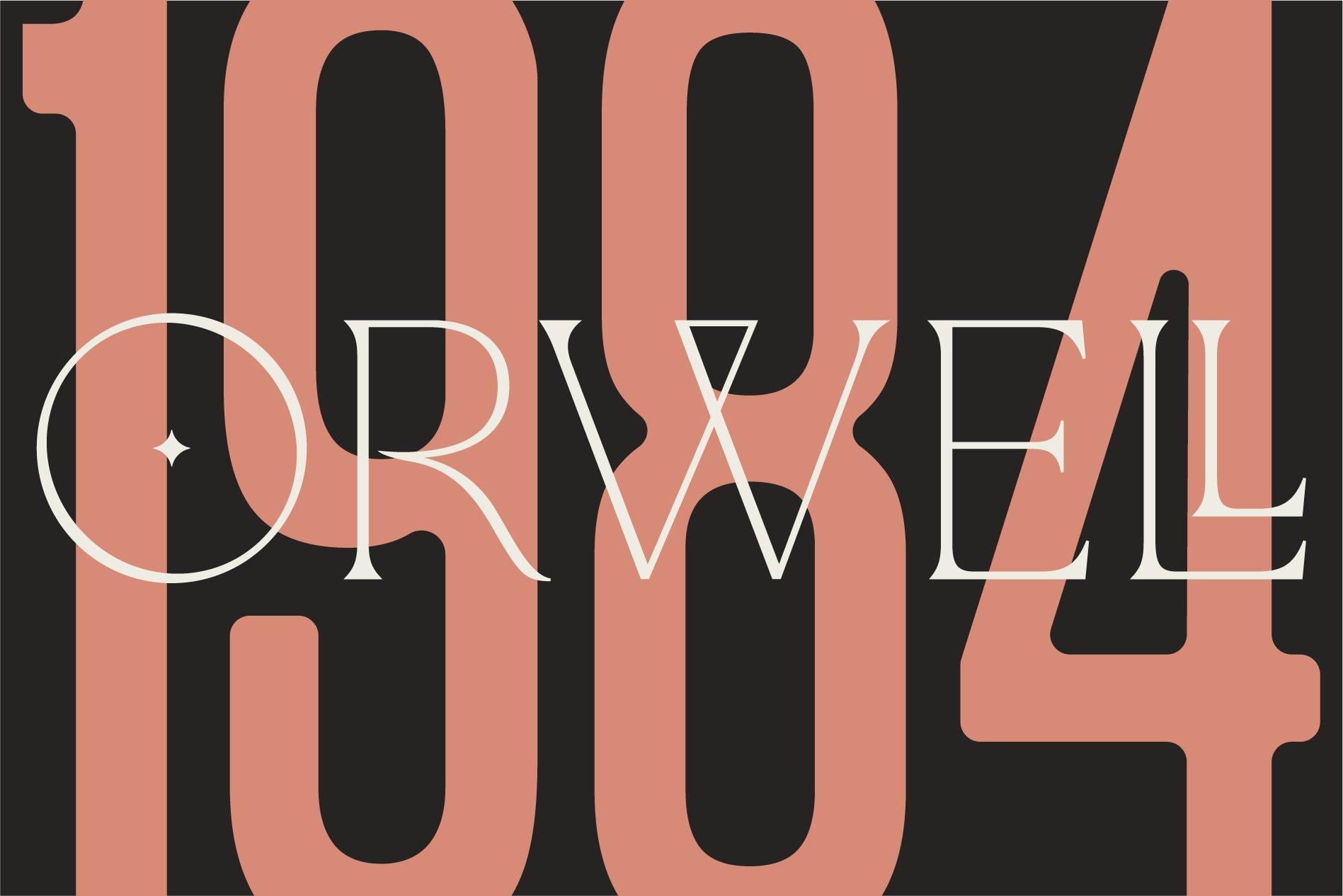 La Rosa Elegant Unique Serif Font example image 6