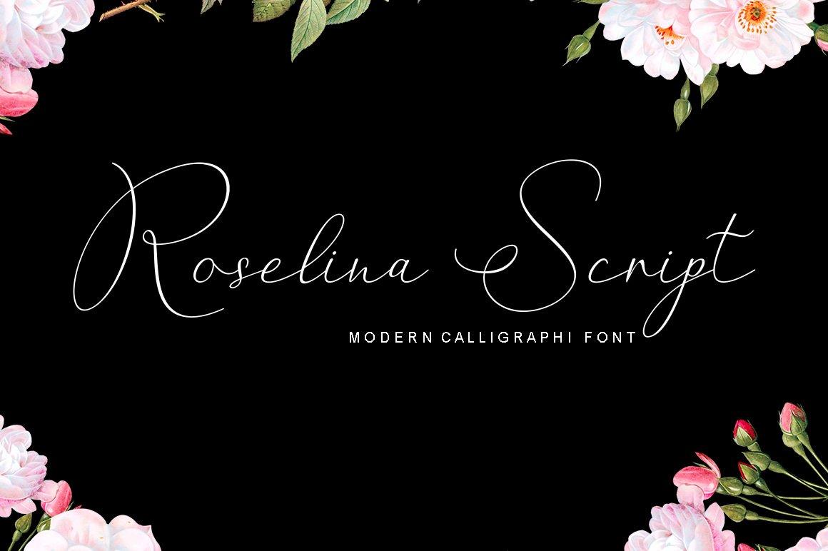 Beauty Font Bundles example image 4