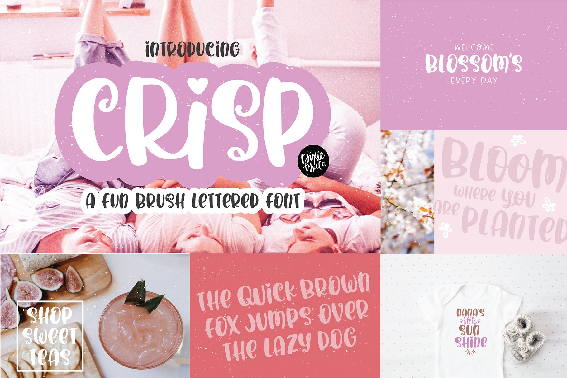 Hand Lettered Font Bundle by Dixie Type Co. example image 3