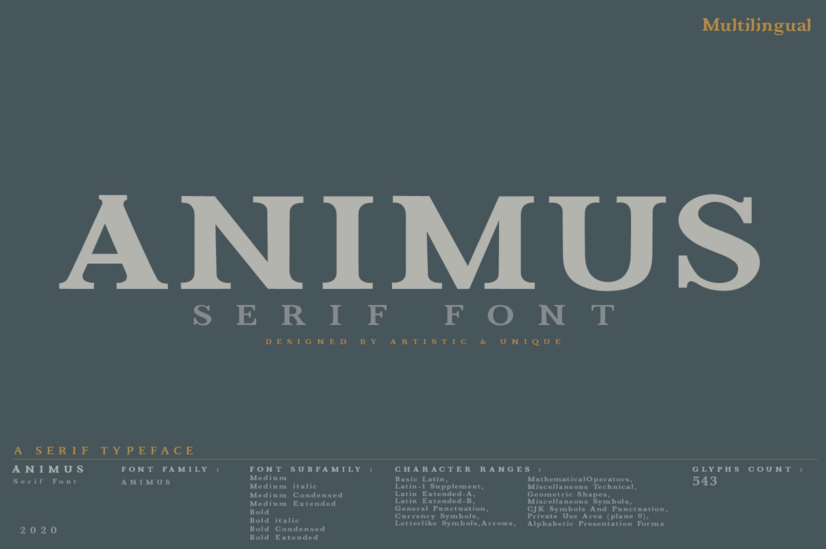 ANIMUS - Serif font family example image 9
