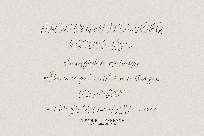 Olioster Elegant Fashion Script Font example image 6