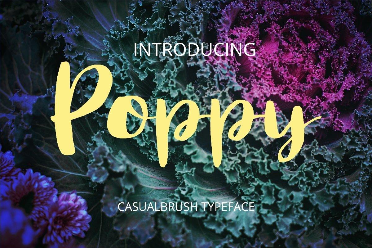 Poppy example image 1