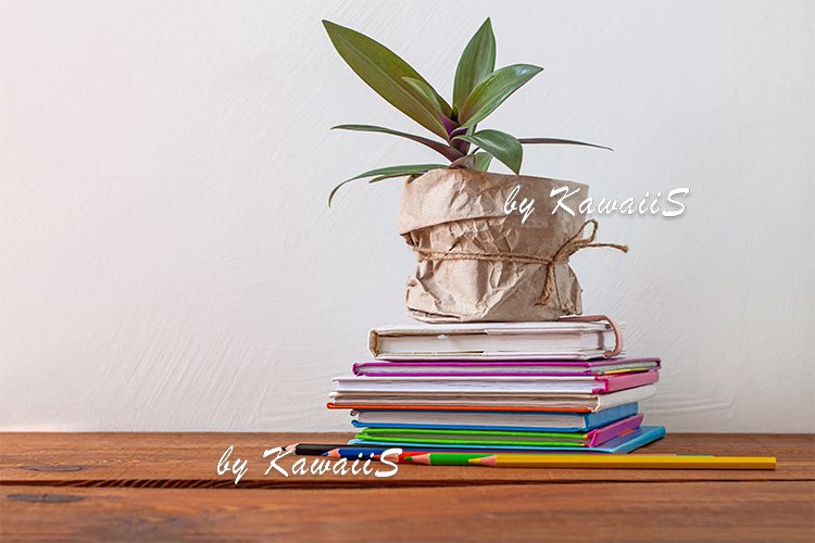 Books stack, pencils with green plant,home e-learning school example image 1