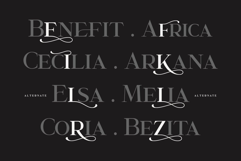 Garcedo Display Serif Font example image 9