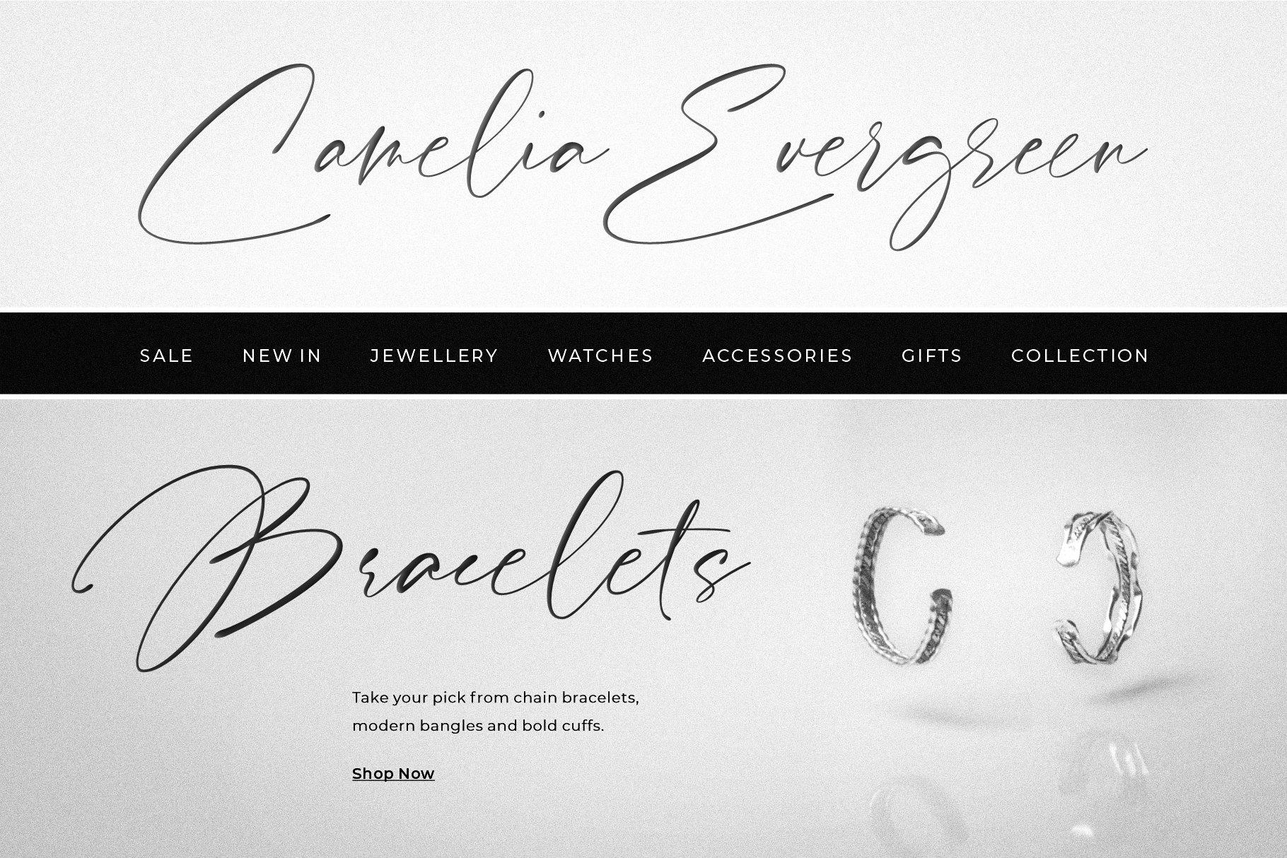 Pardone   Luxury Signature Font example image 7