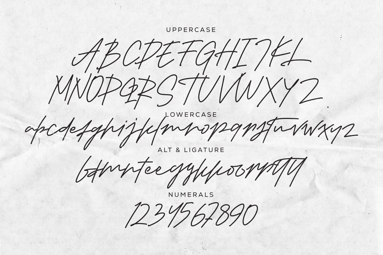 Gekkons - Monoline Script Font example image 4