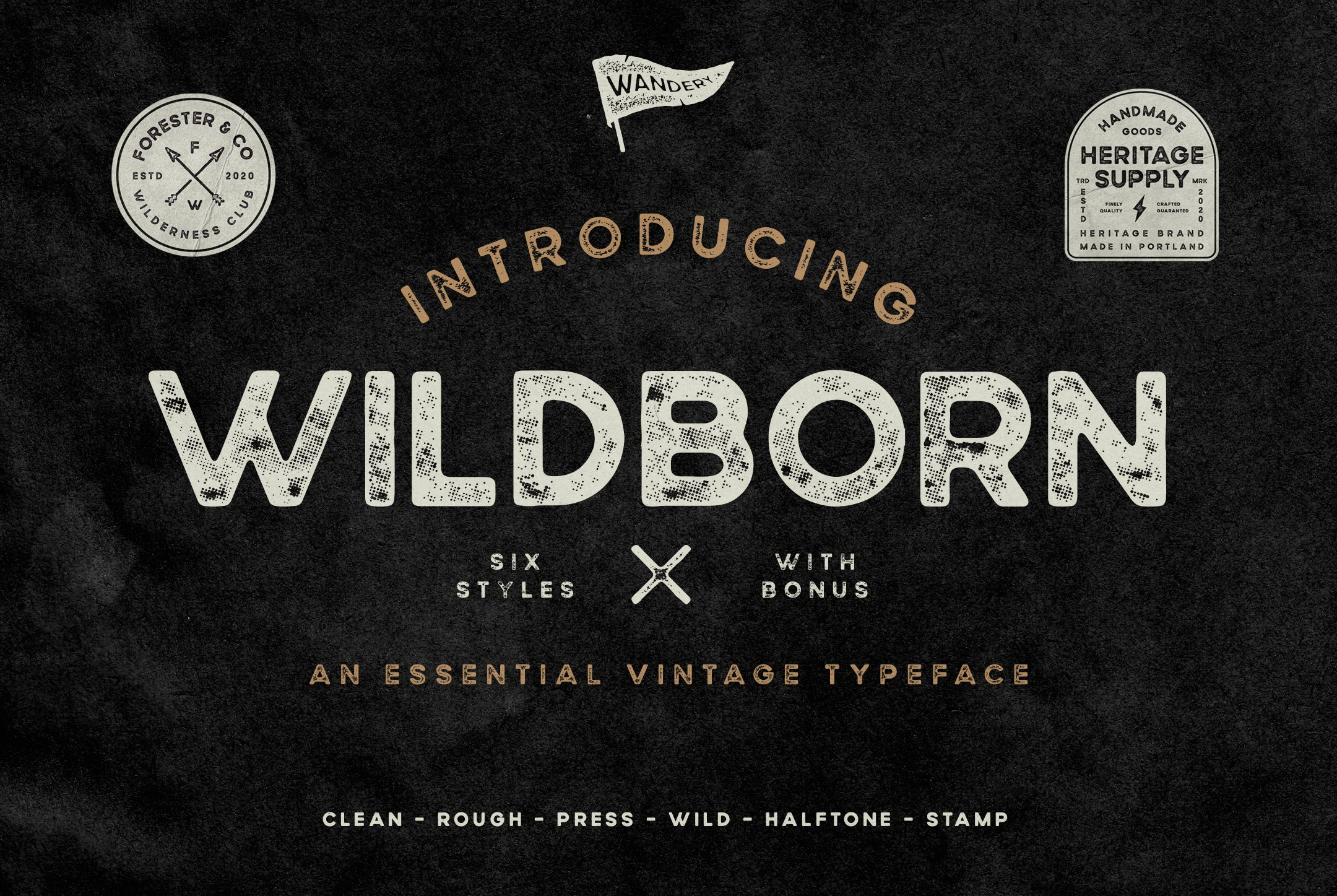 Wildborn Vintage Sans example image 1