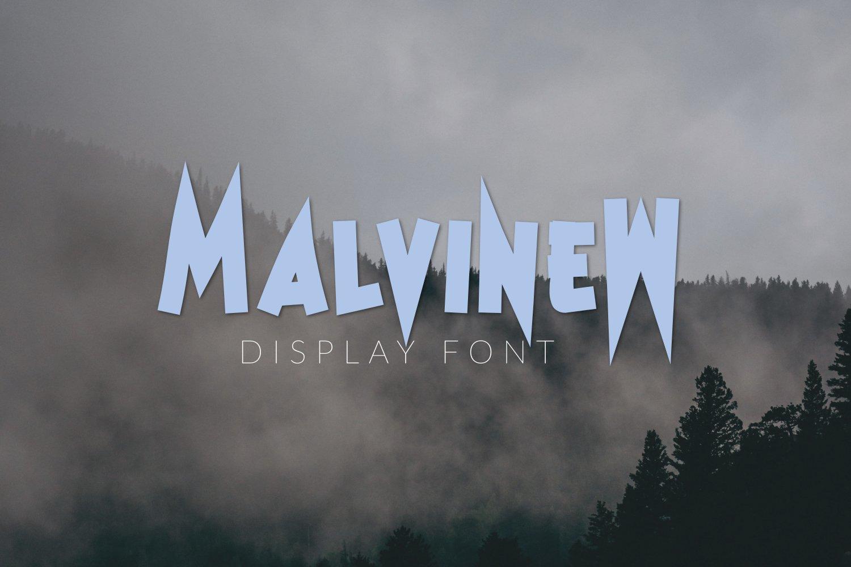 MalvineW example image 4