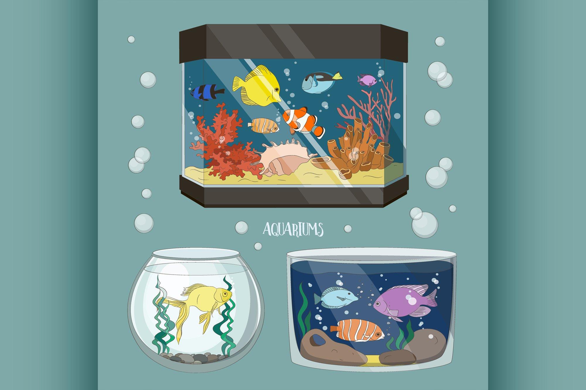 Glass Aquarium Set example image 1