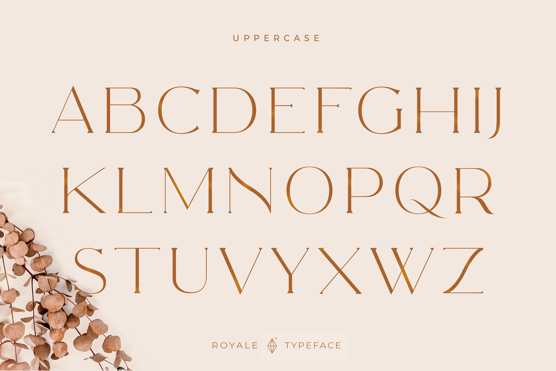 Royale Luxurious Typeface example image 10