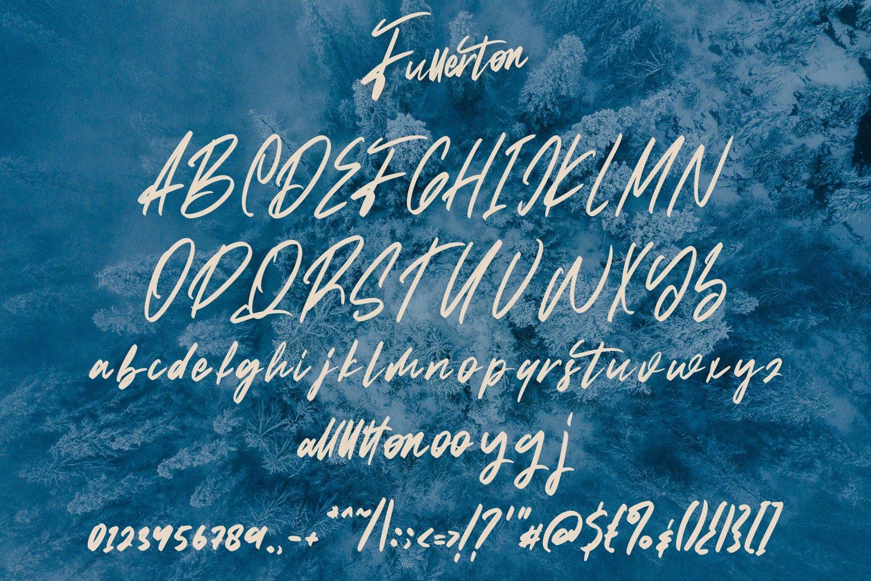 Fullerton - Brush Script Font example image 7